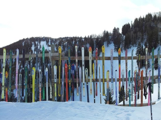 Aspen Mountain / Ajax: Innovative fencing on Aspen Mountain