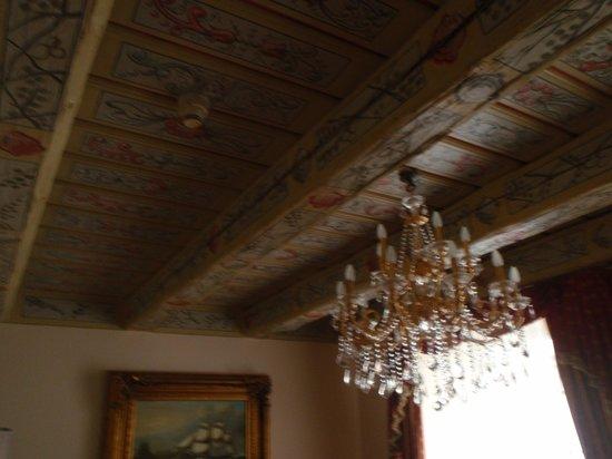 Hotel U Zlateho Stromu: Room ceiling decor