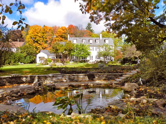 10 Fitch Luxurious Romantic Inn: Back yard in fall