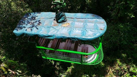 Rainforest Adventures: Aerial tram