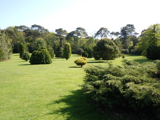 Pinetum Gardens: View across the lawn