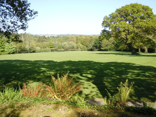 Pinetum Gardens : Another view across the lawn
