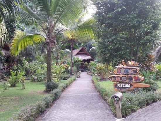 Azania Bungalows : Bungalow y jardines