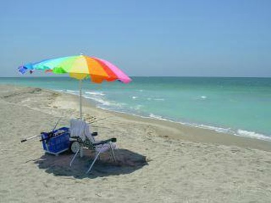 Turtle Beach: My favorite spot on the Siesta key.