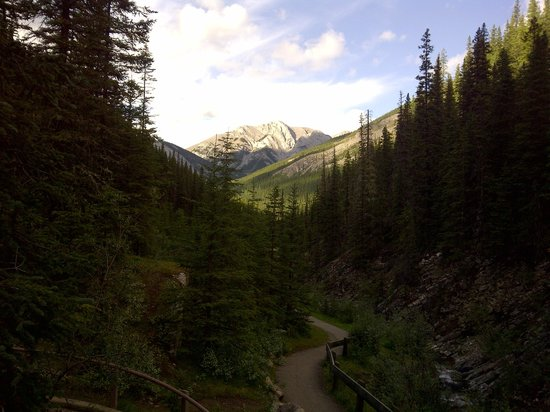 Miette Hot Springs Resort: Maintained trails for all sorts of hiking