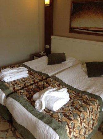 Viking Star Hotel: room