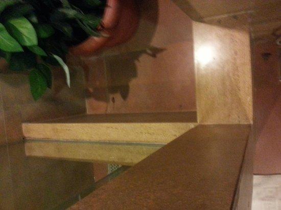 Adamo The Bellus Goa: cockroach in the bathroom