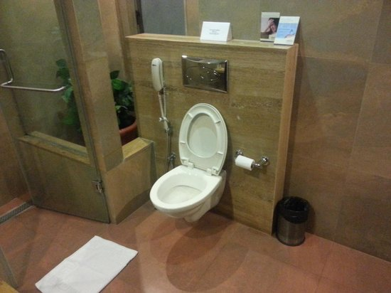 Adamo The Bellus Goa: bathroom