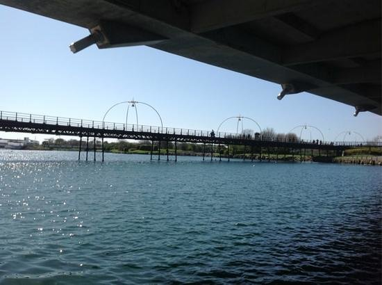 A view of Southport Pier from under the bridge