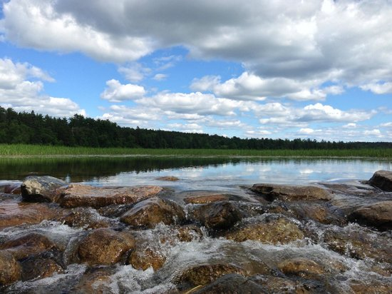 Itasca State Park: The view at the headwaters.