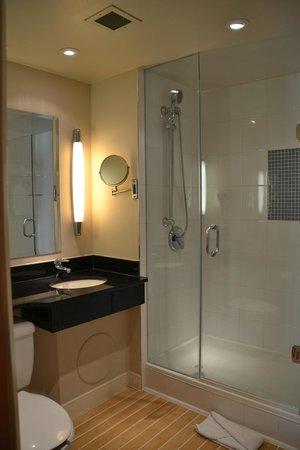 Novotel Ottawa : Baño