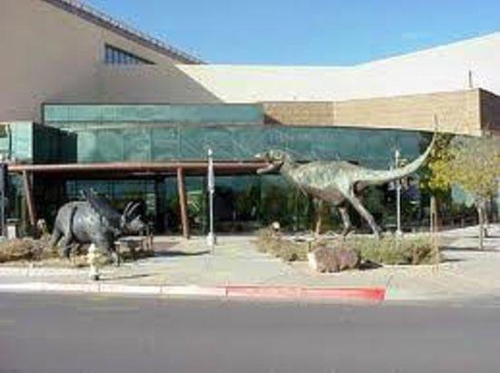 Natural History Museum Parking Saturday