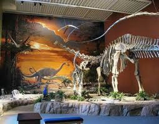 New Mexico Museum Of Natural History Science