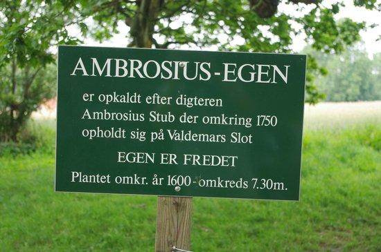 Valdemars Slot: Ambrosius egen