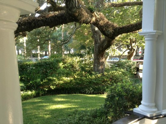 Two Meeting Street Inn: Live oak tree on grounds of inn