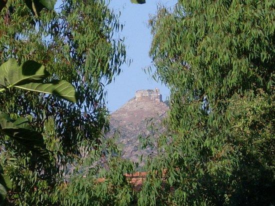 Hotel Tirrena : Vista dal giardino
