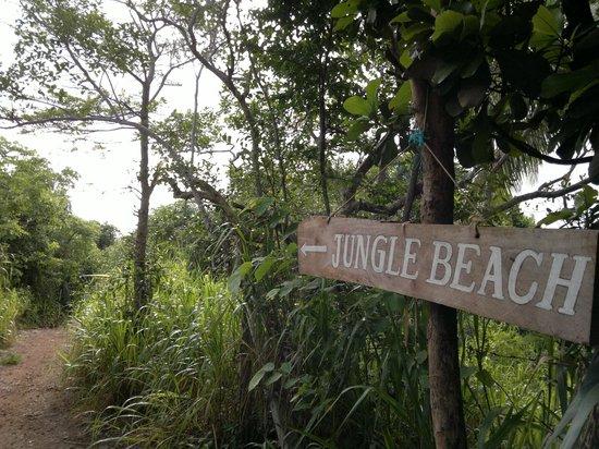 Rumasalla Mountain: Jungle Beach
