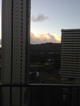 Waikiki Banyan: View from lanai