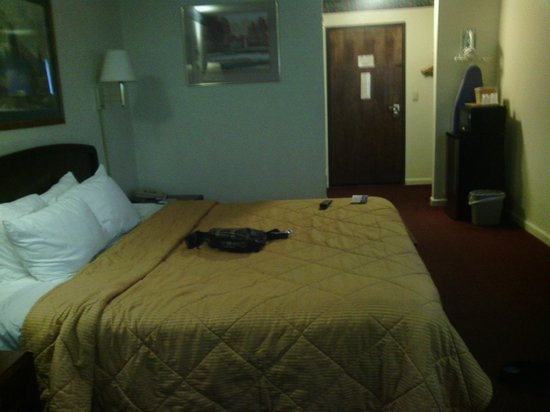 Americas Best Value Inn Stockton East/Hwy 99: The room.