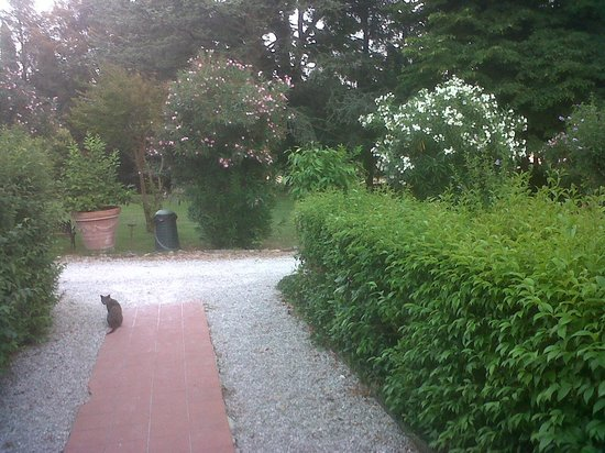 Hotel Villa Stanley: giardino