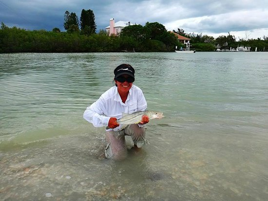 Mitchell's Sandcastles: Snook at blind pass (channel between Sanibel and captiva)