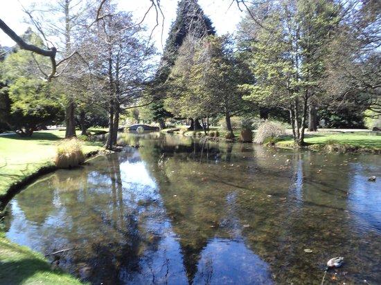 Queenstown Garden, Pond