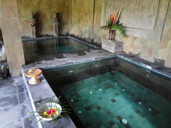 Bliss Spa and Bungalow: Hot tub cold tub