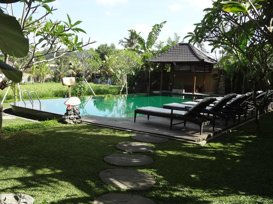 Bliss Spa and Bungalow: Pool