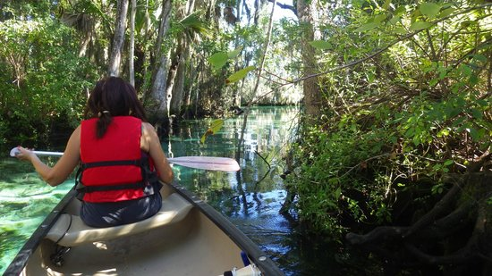 Three Sisters Springs: Paddling into the springs