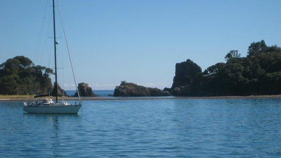 Paihia Harbour: Paihia to Russell