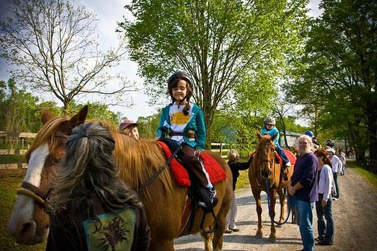 Anne Springs Close Greenway: Exceptional Equestrians is a great way to volunteer on the Greenway!