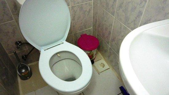 Tulip Guesthouse : Abfluss der Dusche neben der Toilette rechts im Bild. (Morgen nach der Dusche)
