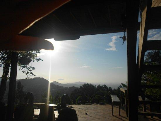 Casa Loma Minca: Vista desde zona común