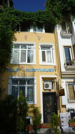 Tulip Guesthouse: Hotelfront