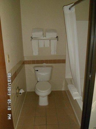 AmericInn Lodge & Suites New London : Bathroom
