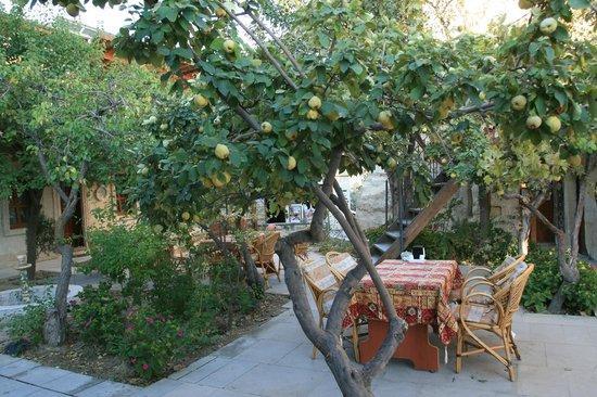 Peri Cave Hotel & Pension : garden