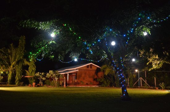 Night Garden Scene Picture Of Ruby True Hotel Bagan