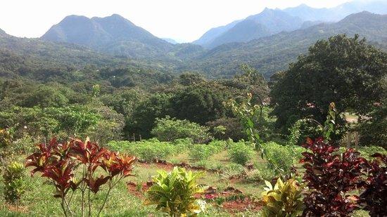 Hotel Restaurant Anachoreo: View of the gardens and mountains