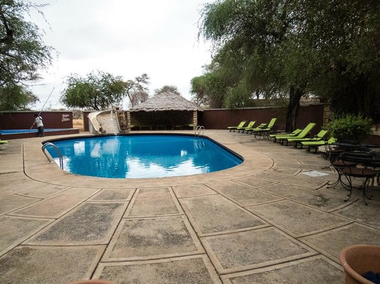 Tarangire Safari Lodge: The pool.