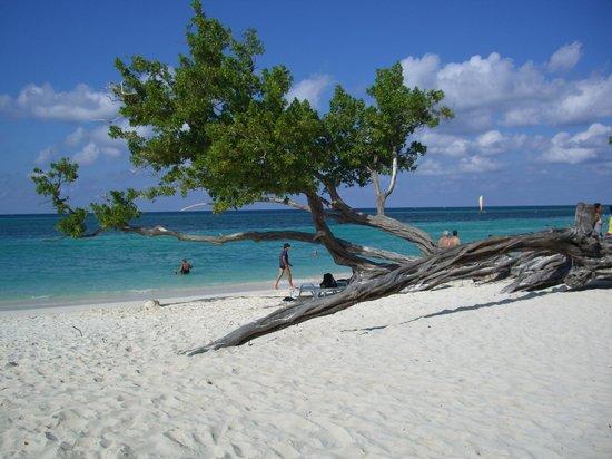 Guardalavaca Beach: magia della natura