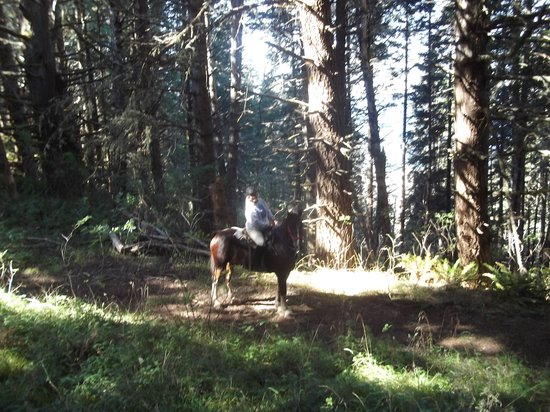 Ricochet Ridge Ranch: Forest trail with Cherokee