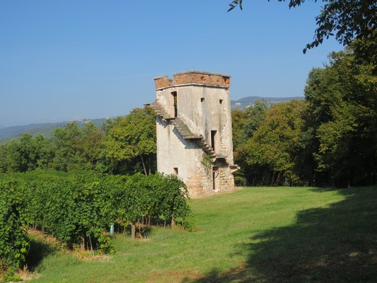 Agriturismo Delo Relais: An ancient tower