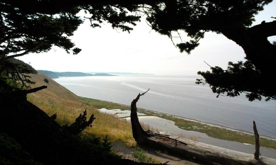 Ebey's Landing National Historical Reserve : view from upper trail