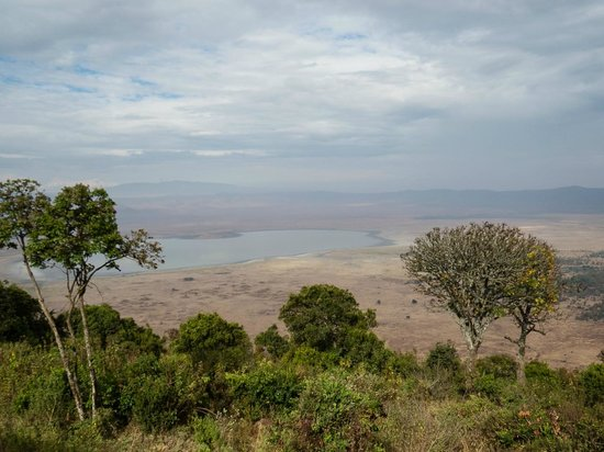 Ngorongoro Serena Safari Lodge: Day time view from the room.
