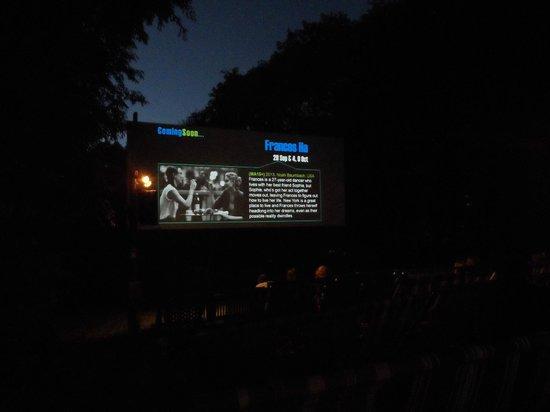Deckchair Cinema : clear sky, warm surroundings