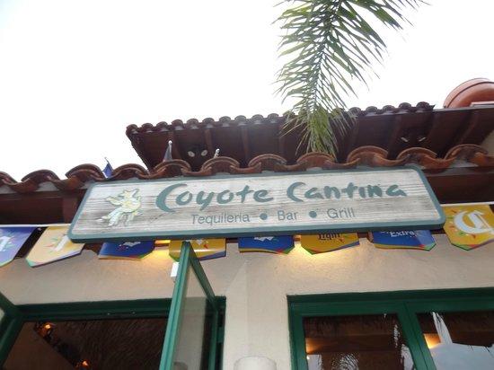 Cafe Coyote: Entrada