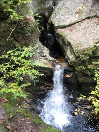 AMC Cardigan Lodge : A hike destination