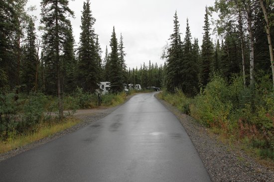 Riley Creek: Campground loop road