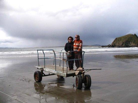 Islotes de Punihuil : En esos carritos te suben a los botes