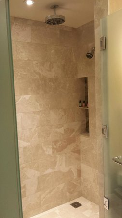 Four Seasons Baltimore: Loved this shower